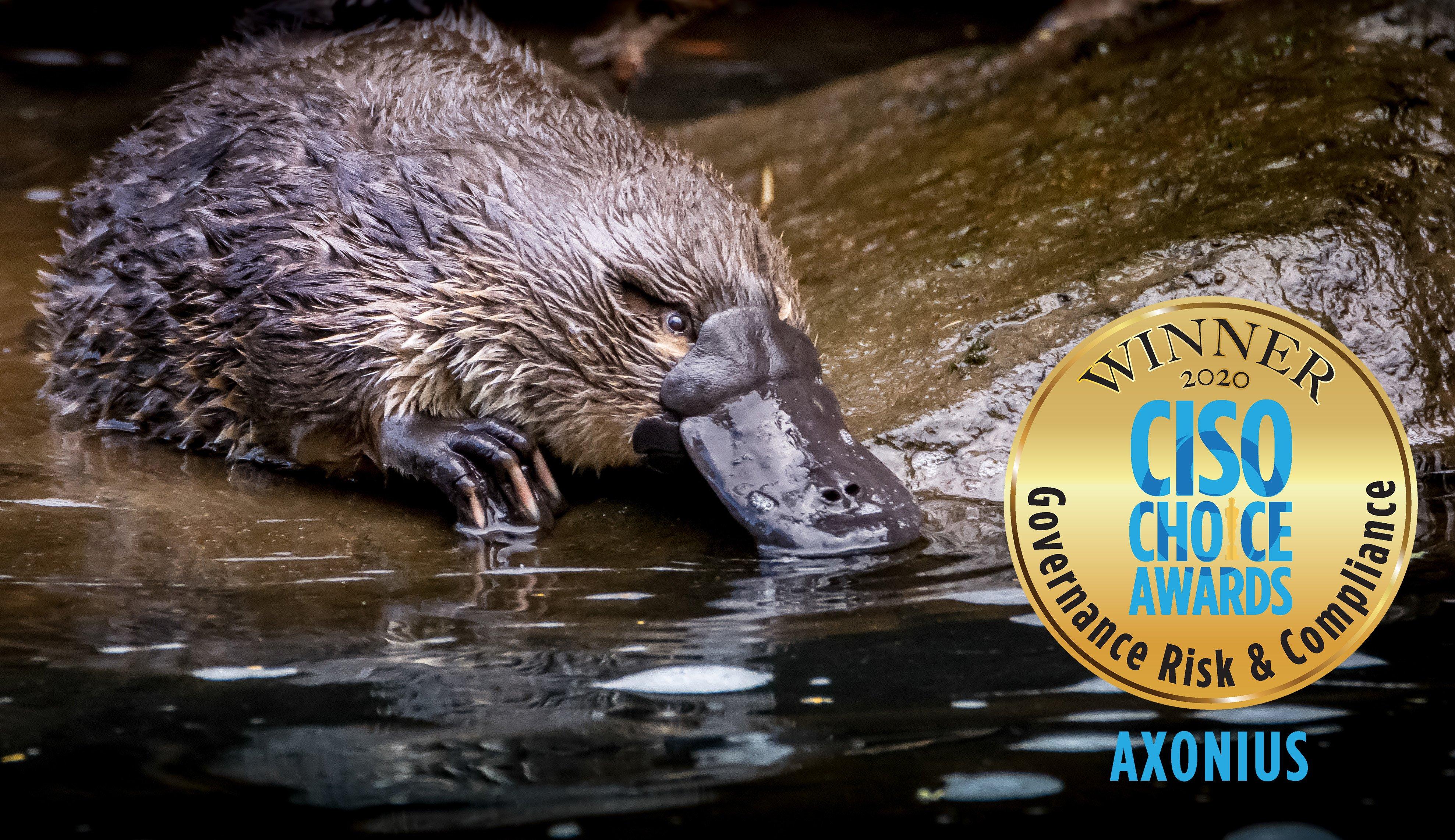 platypus-award